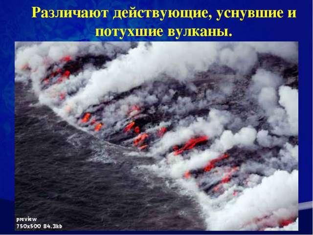 Различают действующие, уснувшие и потухшие вулканы.