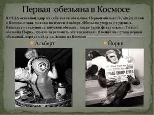 Альберт Йорик
