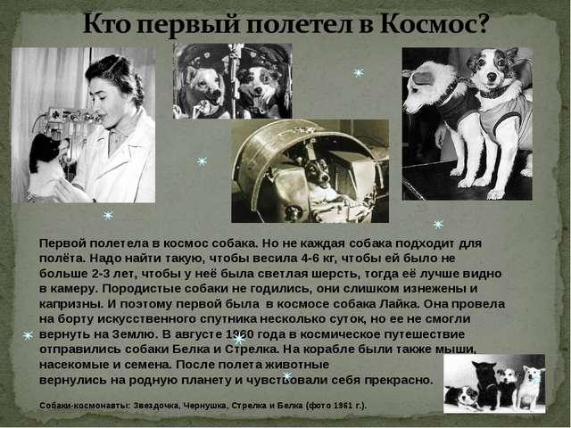 Первой полетела в космос собака. Но не каждая собака подходит для полёта. На...