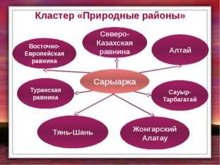 Кластер «Природные районы» Восточно-Европейская равнина Северо-Казахская равн