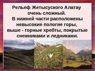 Рельеф Жетысуского Алатау очень сложный. В нижней части расположены невысокие