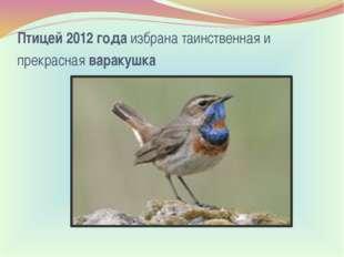 Птицей 2012 годаизбрана таинственная и прекраснаяваракушка