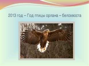 2013 год – Год птицы орлана – белохвоста