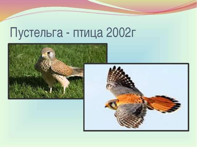 Пустельга- птица 2002г