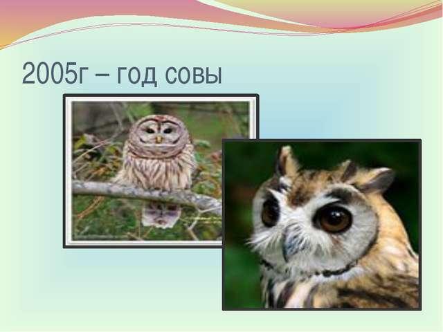 2005г – год совы