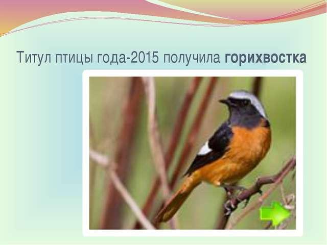 Титул птицы года-2015 получилагорихвостка