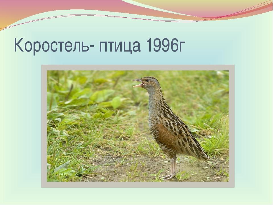 Коростель- птица 1996г