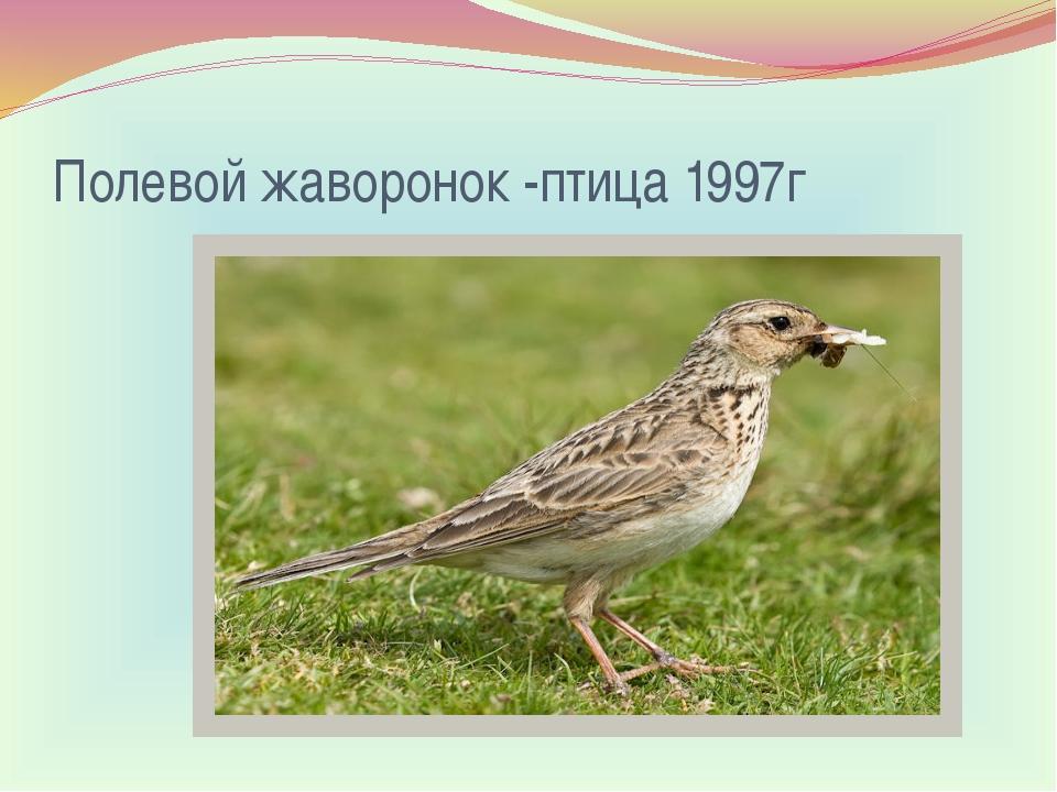 Полевой жаворонок-птица 1997г