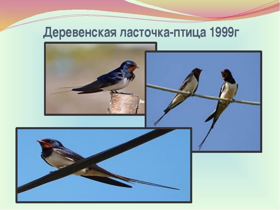 Деревенская ласточка-птица 1999г
