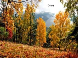 Климат Климат умеренно континентальный. В горах летом прохладнее, а зимой – т