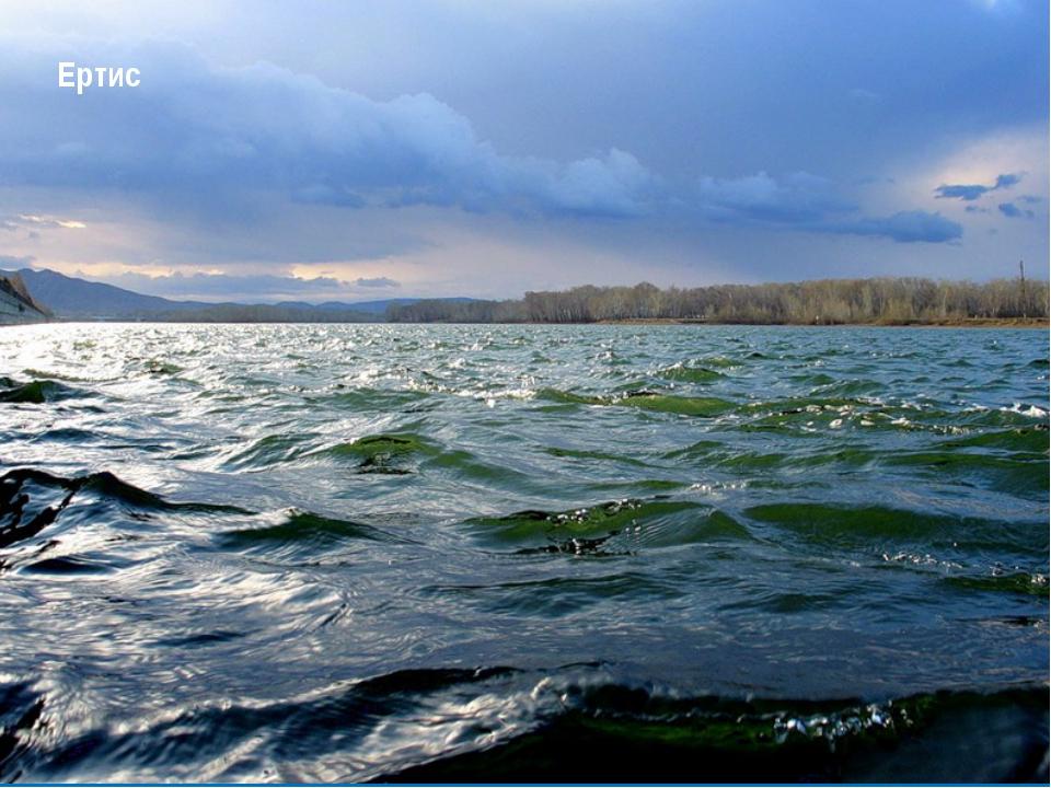 Реки На Алтае много рек, которые берут свое начало с горных снежников и ледни...