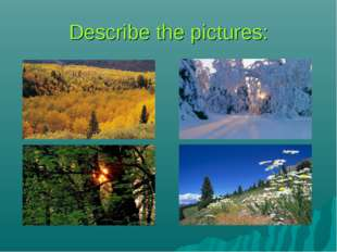 Describe the pictures: