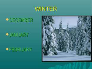 WINTER DECEMBER JANUARY FEBRUARY