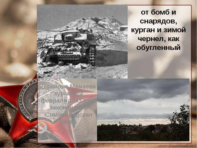 от бомб и снарядов, курган и зимой чернел, как обугленный В районе Мамаева ку...