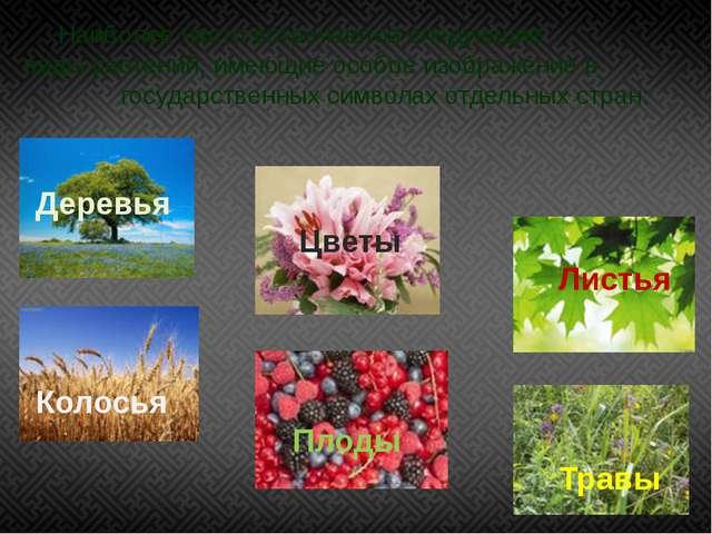Наиболее часто встречаются следующие виды растений, имеющие особое изображени...