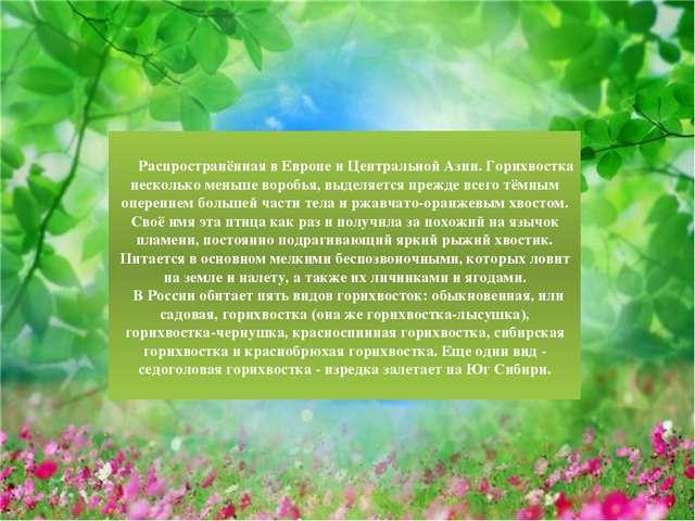 Распространённая в Европе и Центральной Азии. Горихвостка несколько меньше в...