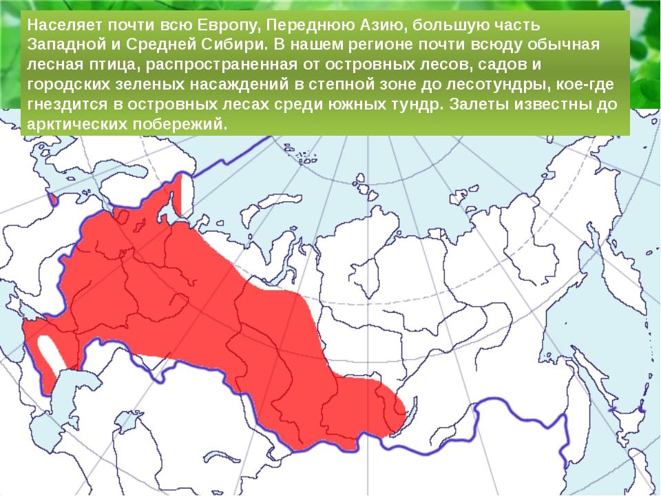 Населяет почти всю Европу, Переднюю Азию, большую часть Западной и Средней Си...