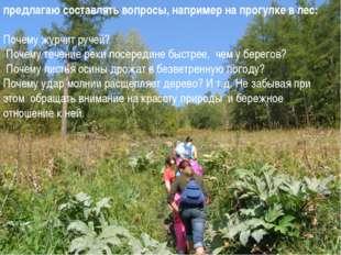 предлагаю составлять вопросы, например на прогулке в лес: Почему журчит руче