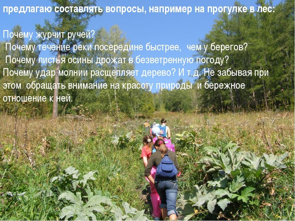 предлагаю составлять вопросы, например на прогулке в лес: Почему журчит руче...
