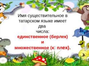 Имя существительное в татарском языке имеет два числа: единственное (берлек)