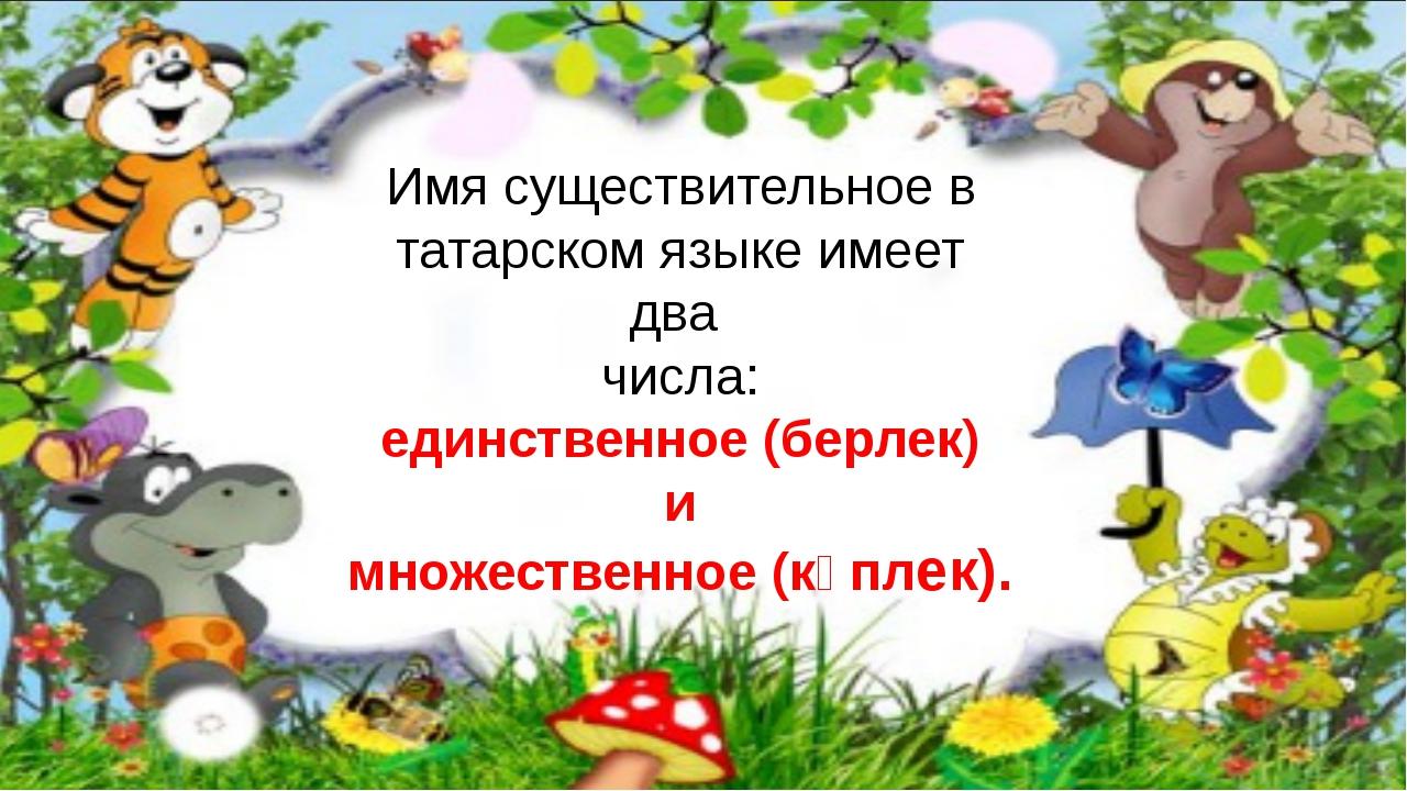 Имя существительное в татарском языке имеет два числа: единственное (берлек)...