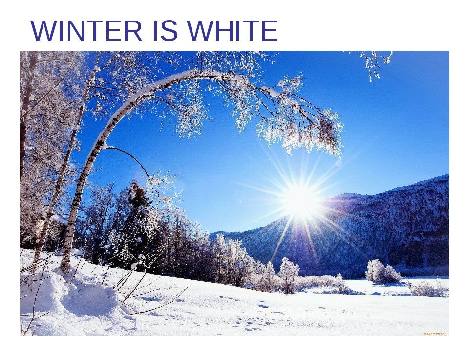 WINTER IS WHITE