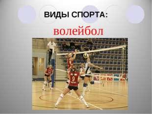 ВИДЫ СПОРТА: волейбол
