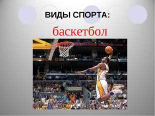 ВИДЫ СПОРТА: баскетбол