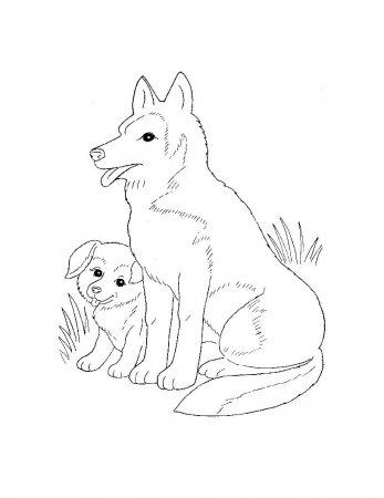 Раскраски для самых маленьких Домашние животные