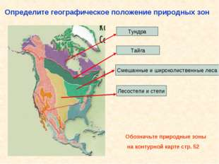 Определите географическое положение природных зон Тундра Тайга Смешанные и ши