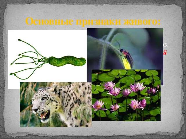 Традиционно свойства живого организма рассматриваются на примере таких живых...