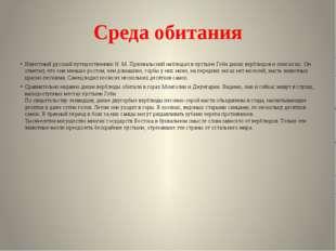 Среда обитания Известный русский путешественник Н. М. Пржевальский наблюдал в