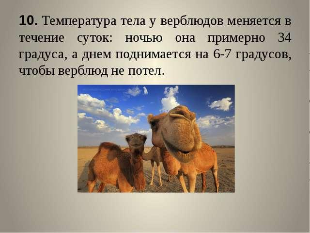 10.Температура тела у верблюдов меняется в течение суток: ночью она примерно...