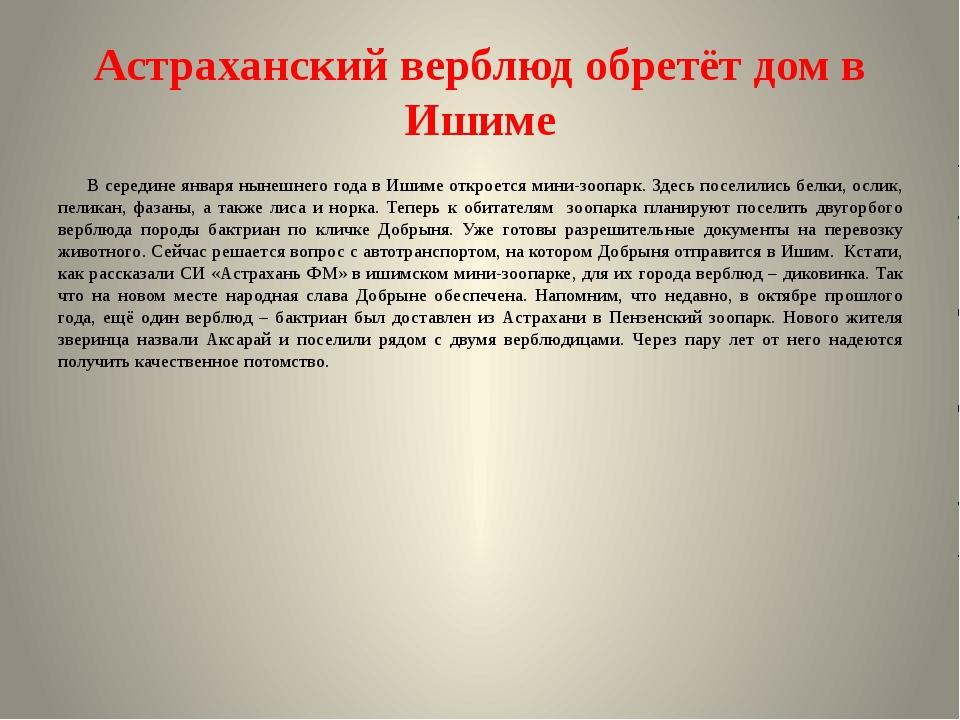 Астраханский верблюд обретёт дом в Ишиме В середине января нынешнего года в И...