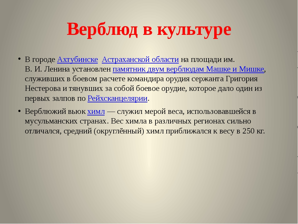 Верблюд в культуре В городеАхтубинске Астраханской областина площади им. В...