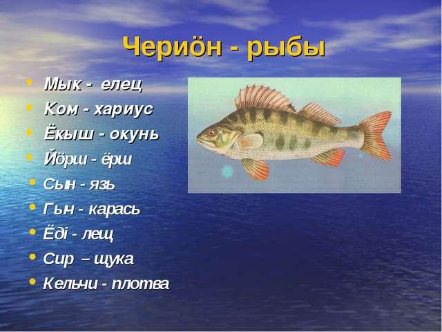 Чериöн - рыбы Мык - елец Ком - хариус Ёкыш - окунь Йöрш - ёрш Сын - язь Гыч -...