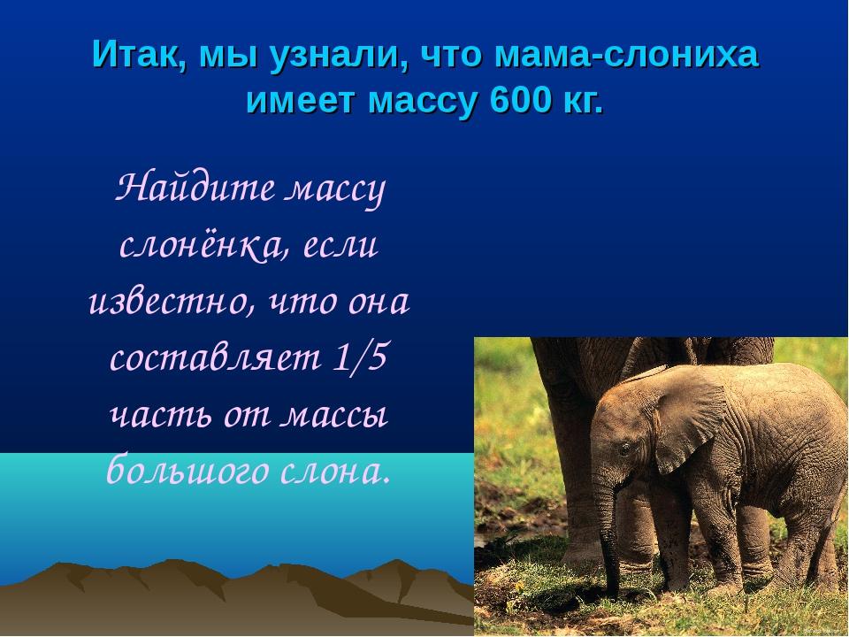 Итак, мы узнали, что мама-слониха имеет массу 600 кг. Найдите массу слонёнка,...