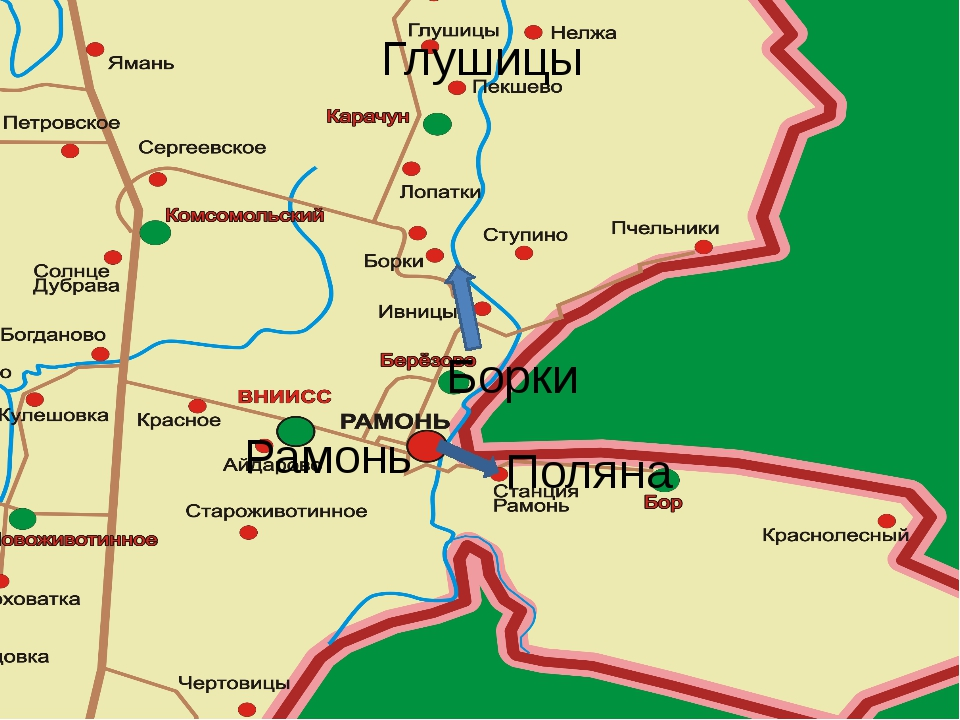 Глушицы Рамонь Борки Поляна
