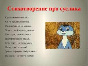 Стихотворение про суслика Суслик на кого похож? Он не кролик, он не ёж. Роет