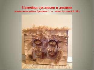 Семейка сусликов в домике (совместная работа Дроздова С. и мамы Густовой И. М.)