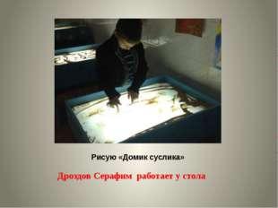 Рисую «Домик суслика» Дроздов Серафим работает у стола