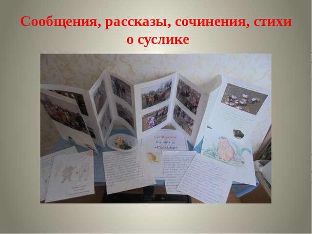 Сообщения, рассказы, сочинения, стихи о суслике