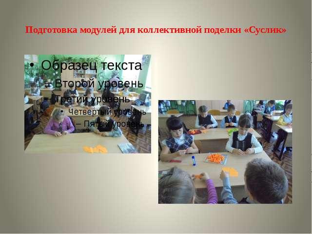 Подготовка модулей для коллективной поделки «Суслик»