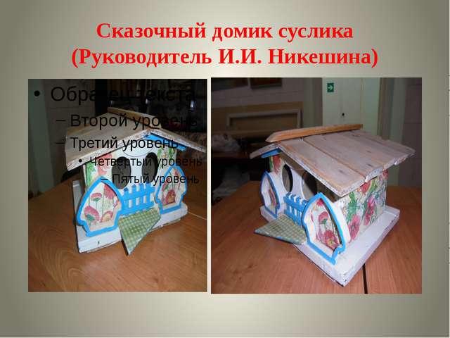 Сказочный домик суслика (Руководитель И.И. Никешина)