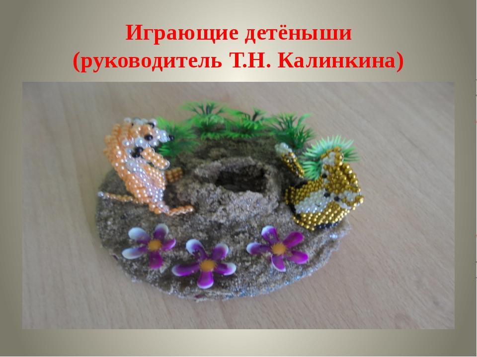 Играющие детёныши (руководитель Т.Н. Калинкина)