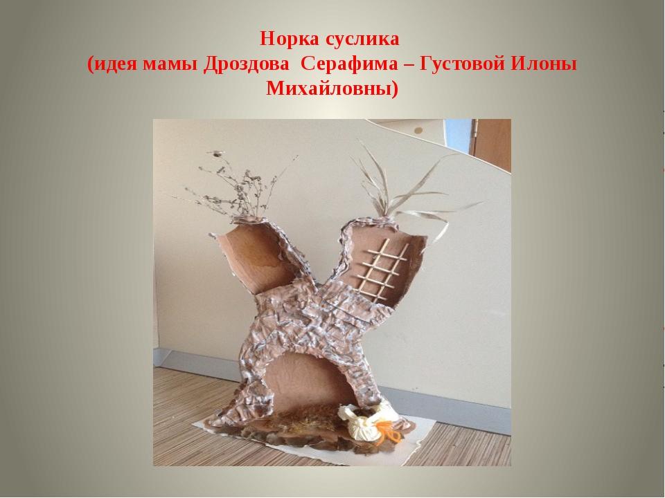 Норка суслика (идея мамы Дроздова Серафима – Густовой Илоны Михайловны)