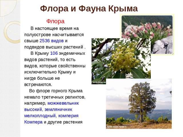 Флора и Фауна Крыма Флора В настоящее время на полуострове насчитывается свыш...
