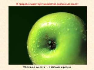 Яблочная кислота – в яблоках и ревене В природе существует множество различны