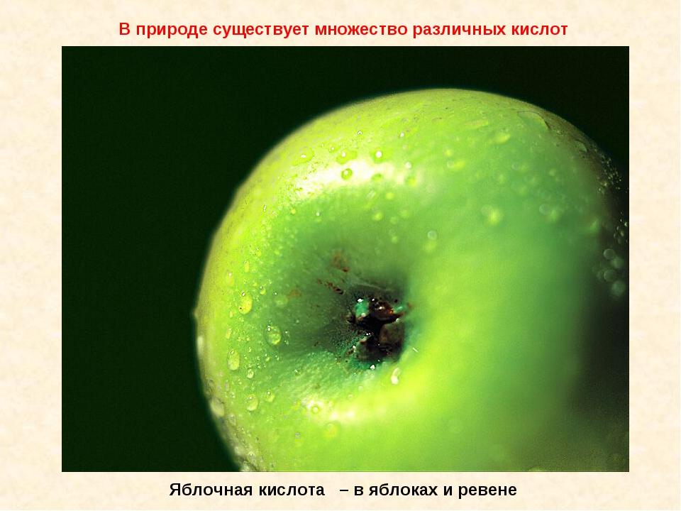 Яблочная кислота – в яблоках и ревене В природе существует множество различны...