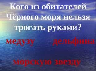 Кого из обитателей Чёрного моря нельзя трогать руками? медузу морскую звезду